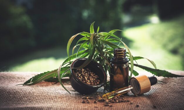 Medical & Recreational Marijuana: The Importance of Understanding the Difference